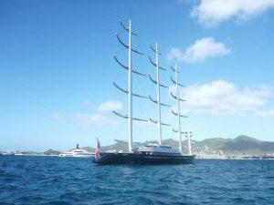 P1190458-Maltese Falcon-klein