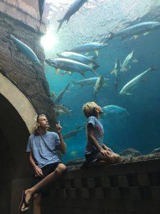Aquarium Atlantis